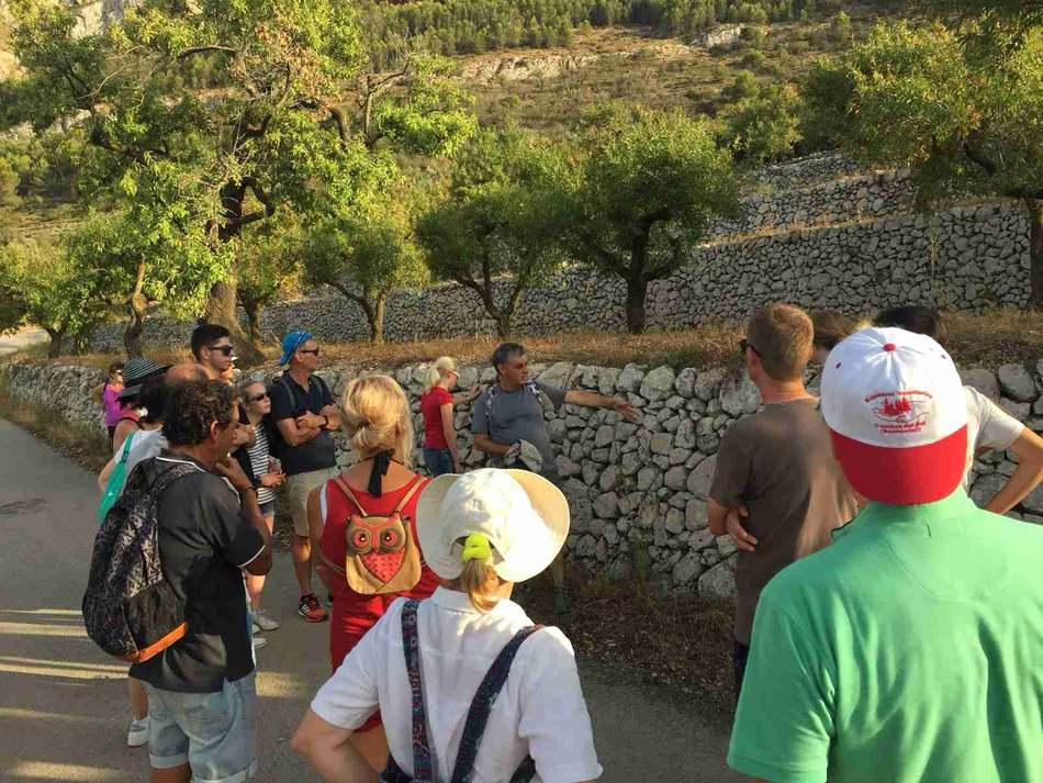 """""""Descobreix els paisatges de Dénia"""" proposa 14 rutes guiades gratuïtes pel medi natural dur..."""
