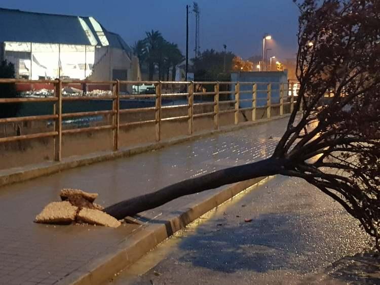 Dénia reparará el pabellón deportivo destruido por el temporal mientras inicia el proyecto d...