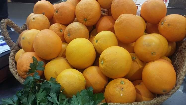 Foto Dénia promueve el consumo de naranjas de productores locales en las escuelas