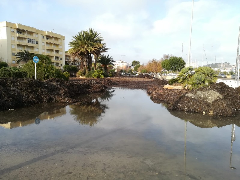 Dénia aprova inicialment el Pla d'Actuació Municipal (PAM) enfront del risc d'inundacions