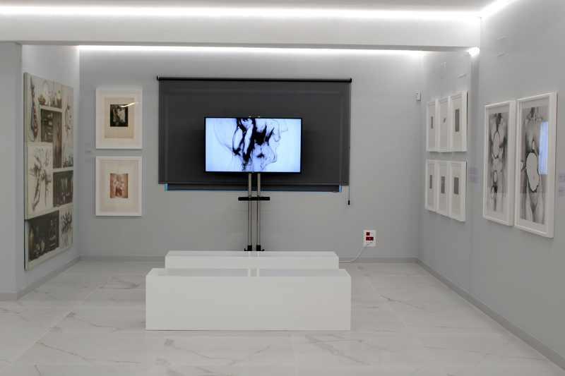 Naix a Dénia l'Espai d'art Joan Castejón, un projecte expositiu sobre la trajectòria de l'ar...