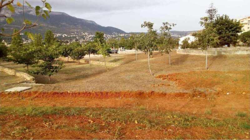 Imatge actual del parc
