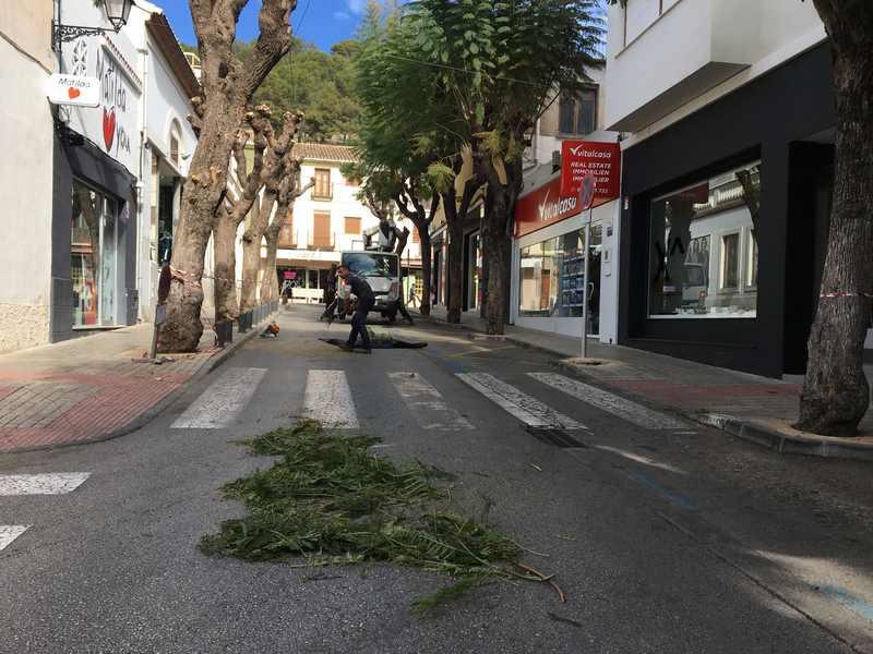 Foto Tancament al trànsit de Carlos Sentí per treballs de poda